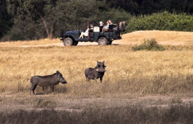 lower_zambezi_national_park_024